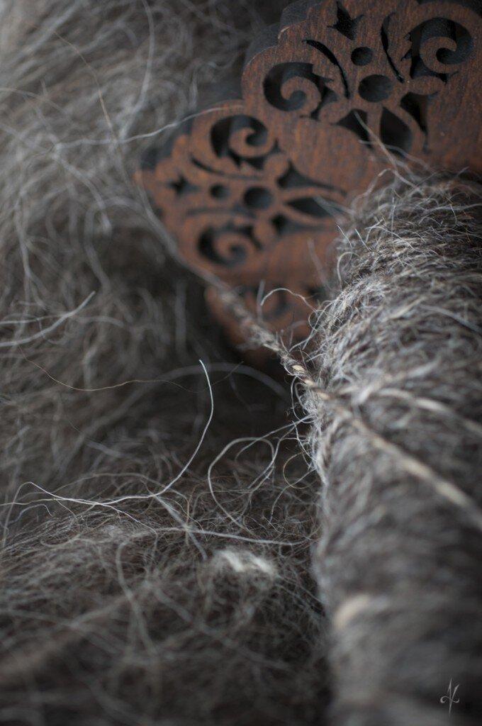 barwna polska owca górska