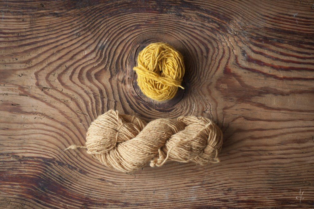 Efekty farbowania wełny kurkumą i łuskami cebuli