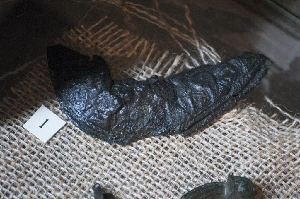 Fragment Broszy żółwiowej z Truso