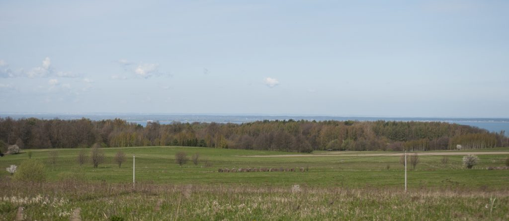 Panorama Zalewu Wiślanego